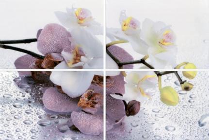 ALBA Orchid Панно 40*60 AL-P-ORC AL-P-ORC